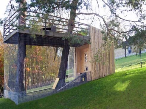 ISBU Treehouse Chicken Coop