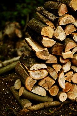 got wood