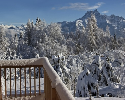Snowy Montana - banner art
