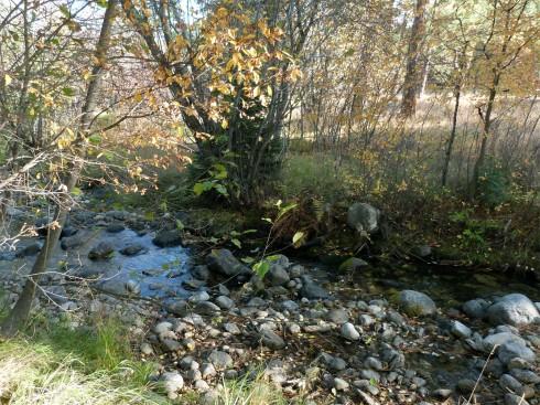 Corten Creek