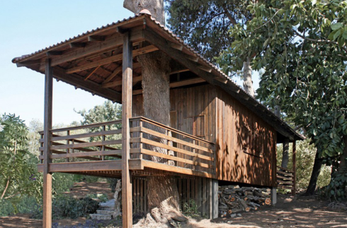 two-tree-house