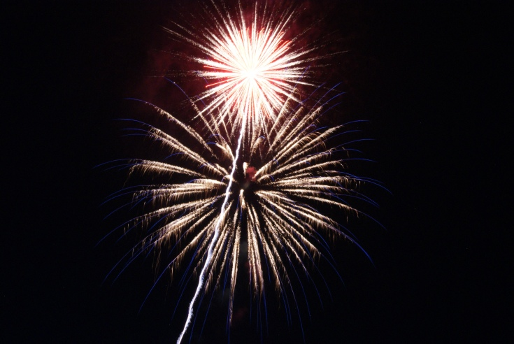 Happy 4th of July, Everyone! May your celebration be safe, relatively sane and wonderful!